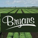 Bryans Salads